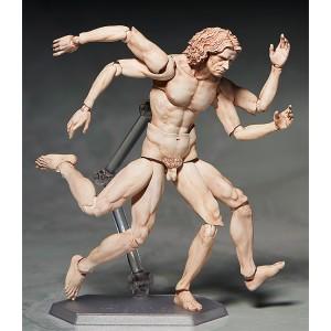 figma Vitruvian Man (2nd Reissue)